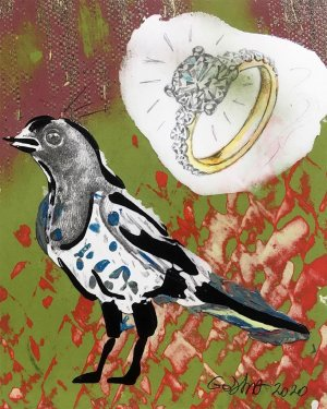 Magpie and Ring